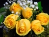 Half Dozen Rose Bouquet -yellow